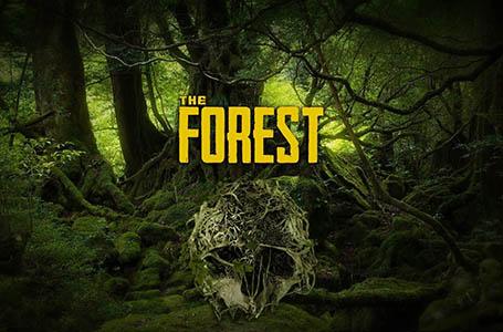 Quelle configuration PC pour The Forest ? (Minimale & Recommandée)